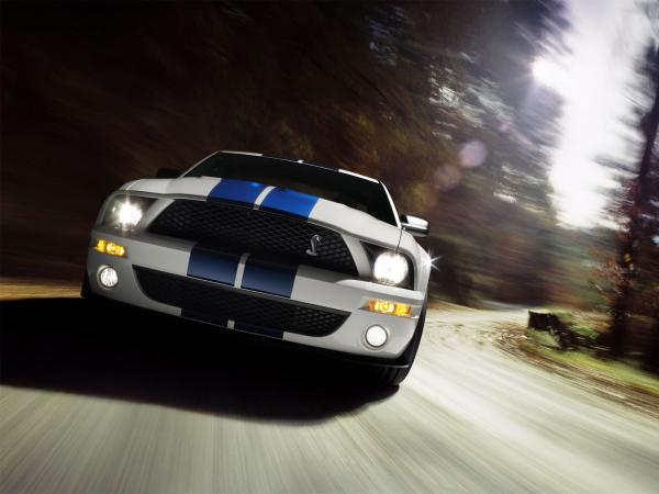 Ford Shelby Gt500 Wallpaper7