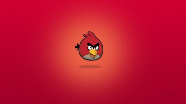 Angry Birds Wallpaper 05