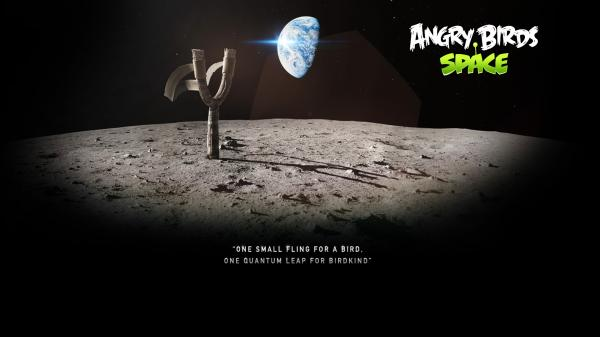 Angry Birds Space Wallpaper 08