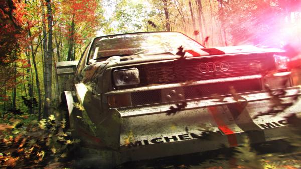 Dirt3 Wallpaper4